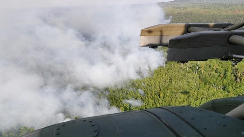 تأثير خطير لحرائق الغابات على جائحة كورونا