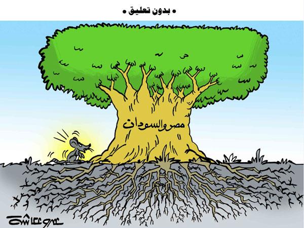 شاهد.. مصر والسودان.. في كاريكاتير الوفد